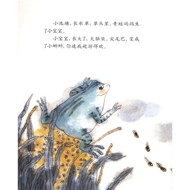 小青蛙找妈妈图片_小青蛙找妈妈_红黄蓝早教早教中心
