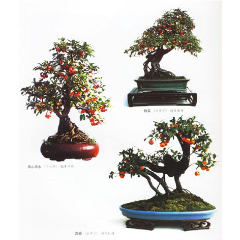 桃树盆栽造型方法