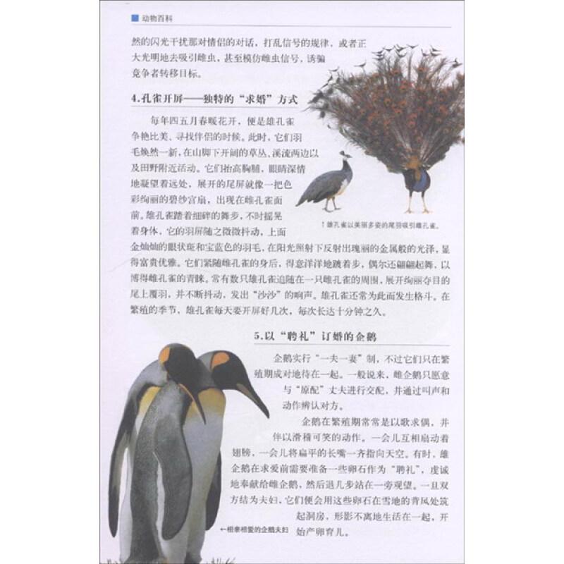 《青少年必读经典:动物百科(彩色图解)》【摘要