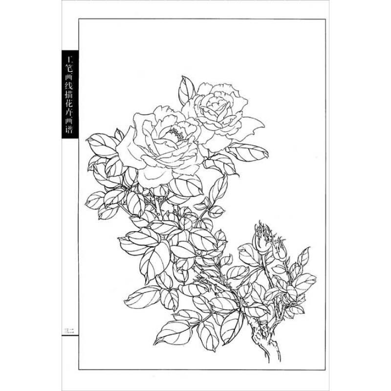 工笔画线描花卉画谱:月季篇 产品描述 内容简介  月季是一种蔷薇科