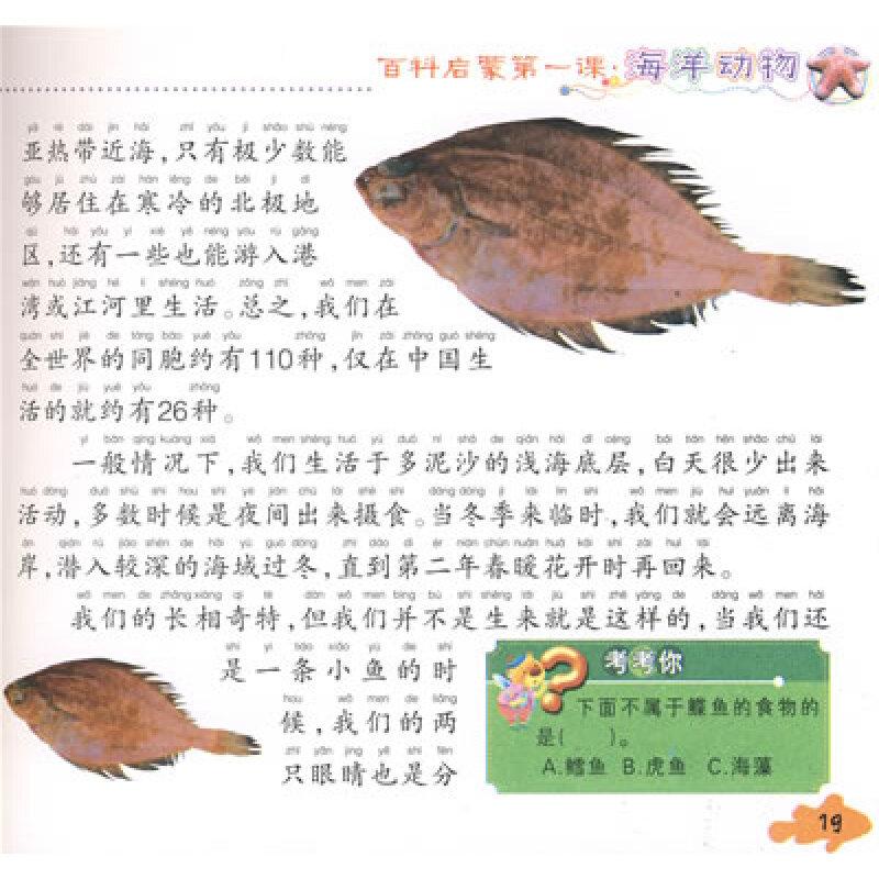 献给孩子的经典丛书:海洋动物(注音版)(附光盘1张)