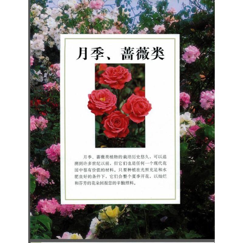 dk权威经典:动物植物花卉大百科(套装共2册)(京东特别套装) ¥458.