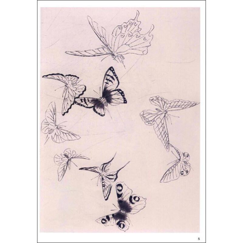 绘画 国画技法 美术基础教学系列丛书:蝴蝶设色技法图片