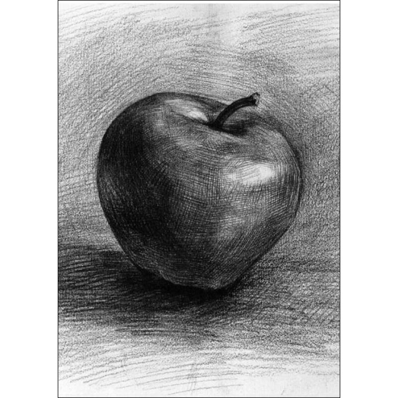 素描/《绘画学习第1起跑线·基础素描:素描静物教程...
