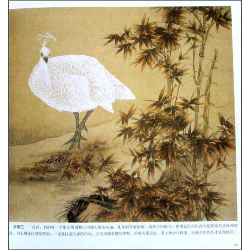 工笔白孔雀画法图片