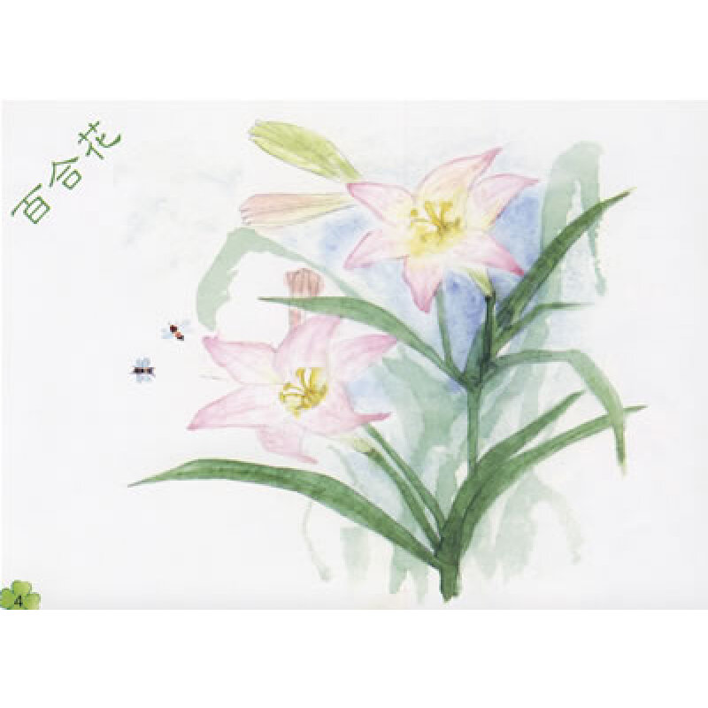 花卉马克笔手绘图