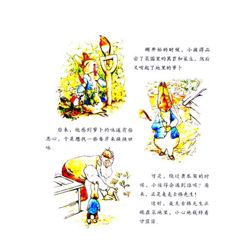 绘本故事集《彼得兔的
