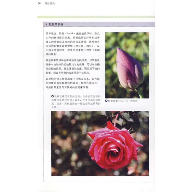 数码摄影构图圣经图片