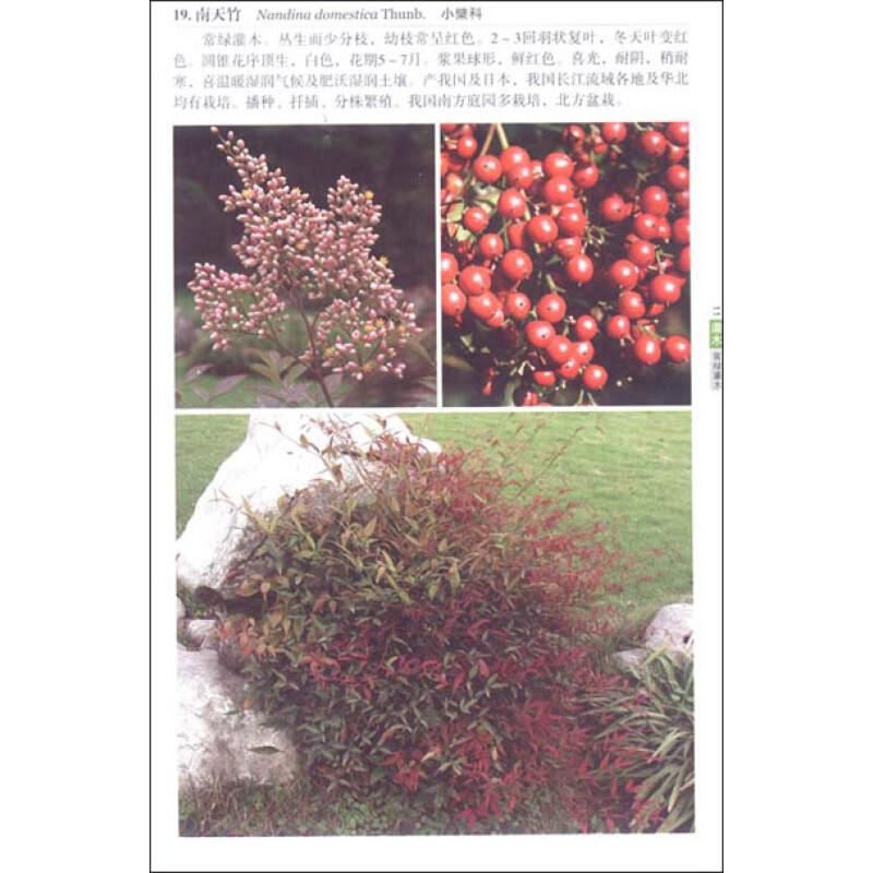 园林景观植物识别与应用:灌木·藤本报价