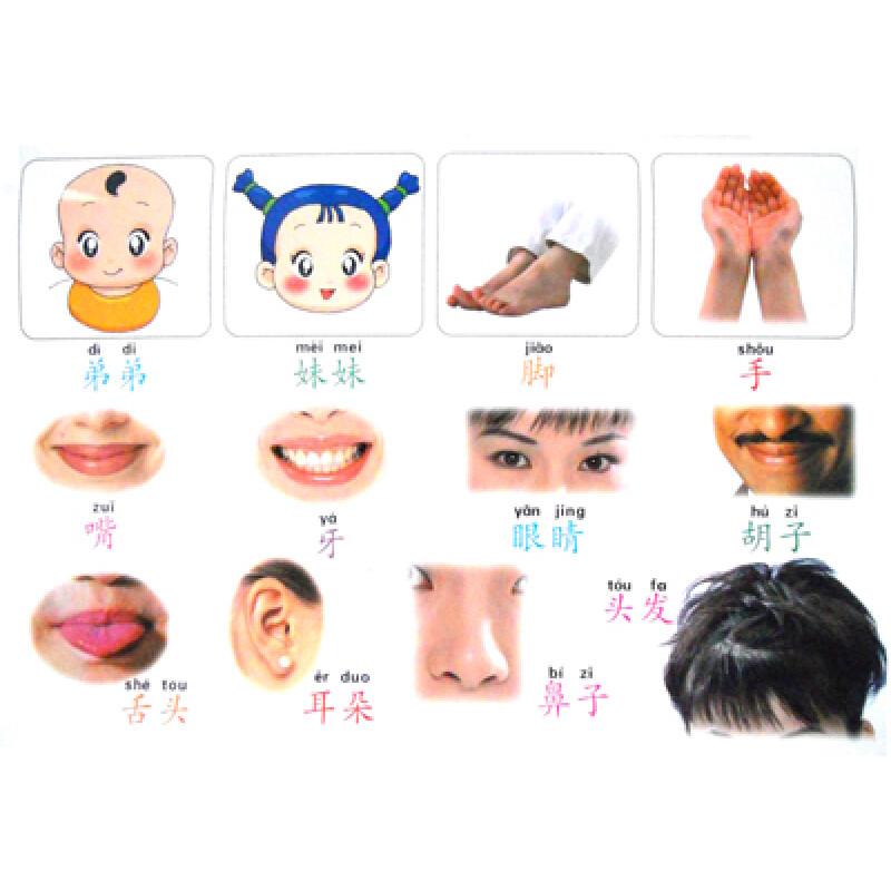 《千千龙幼儿教学系列:宝宝看图学说话(小班3-4岁)》