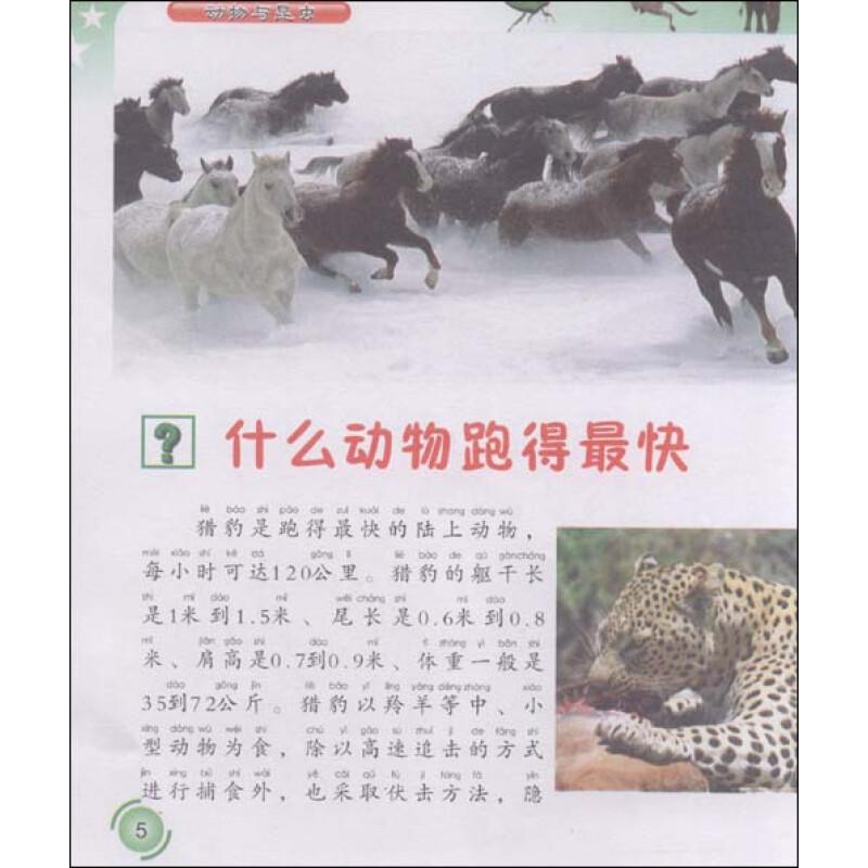 十万个为什么-动物与昆虫(附vcd光盘1张)
