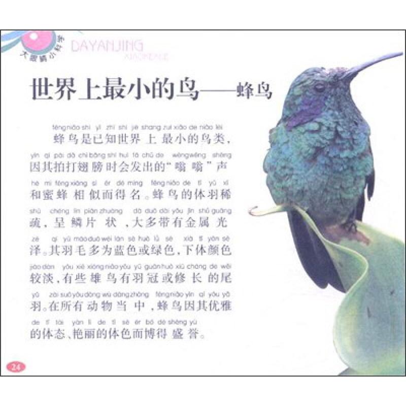 汲氧高手——斑头雁 传统文化的象征——鸿雁 短脖子的绅士——雪雁