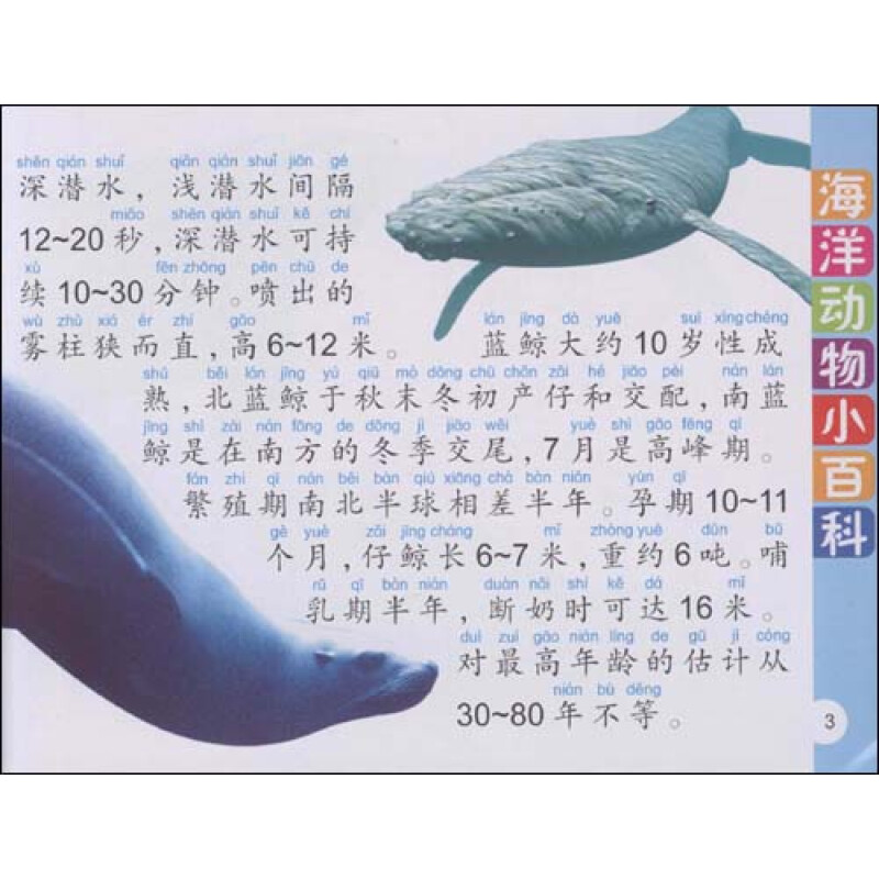 《少儿动物小百科:海洋动物小百科(精华本)(注音版)