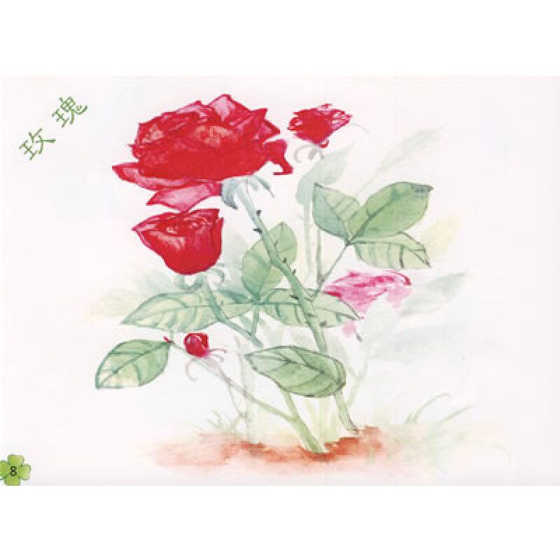 插画花卉手绘图