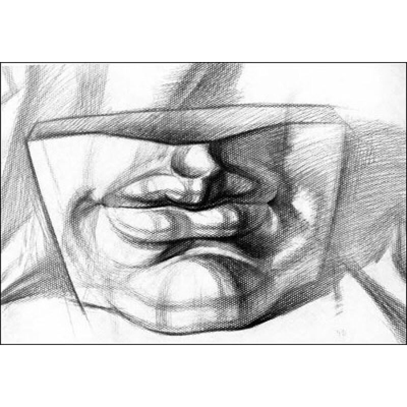 5折) 《结构素描入门挂图:石膏头像训练提高篇》主要内容包括描头像是