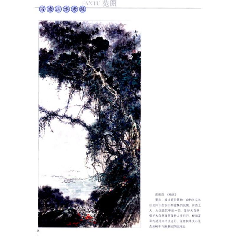 会艺术水平考级美术书法专业系列 中国写意山水画范图 图书