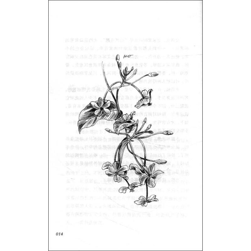 手绘海报修饰花
