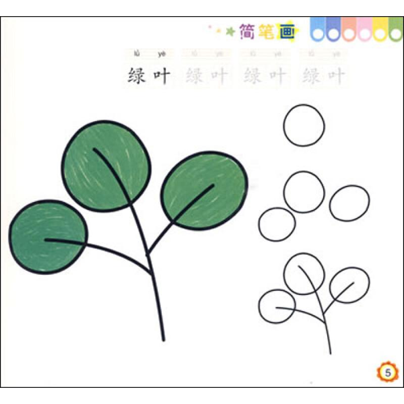 大树生长过程简笔画