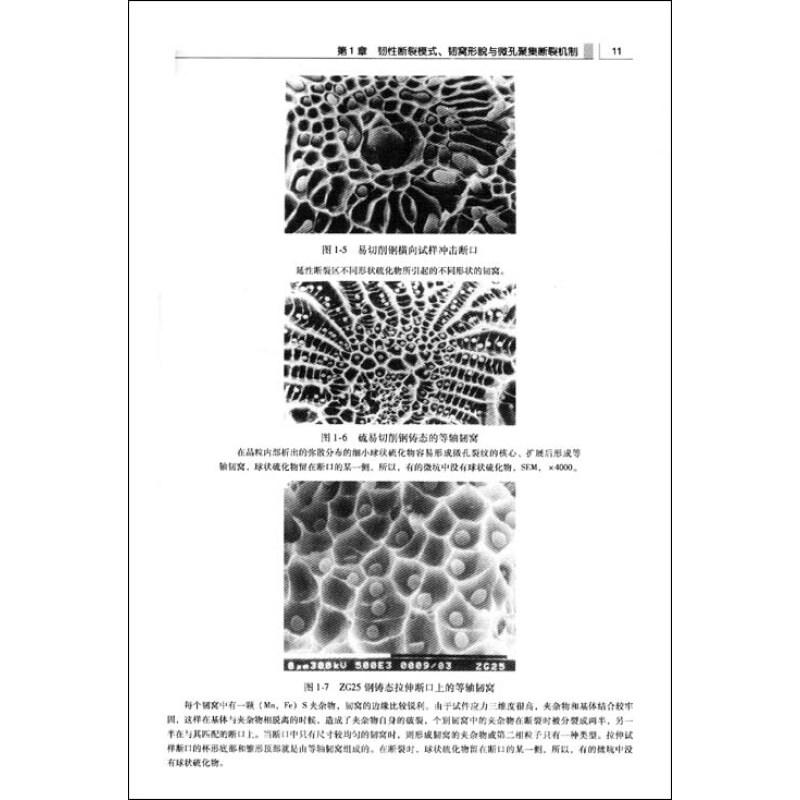40CR显微组织