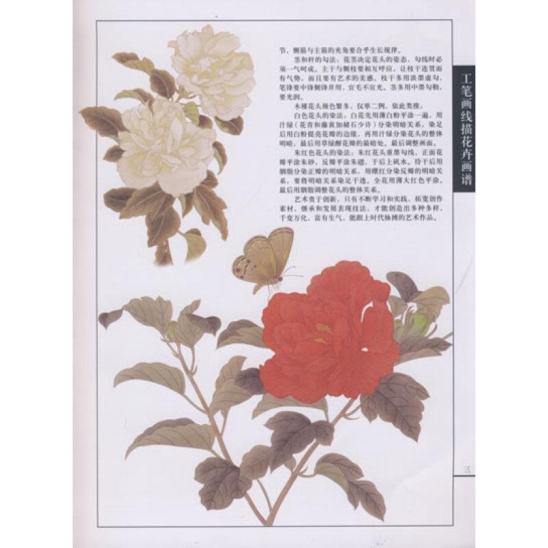 工笔画线描花卉画谱:木槿篇