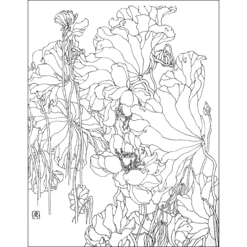 牡丹素描铅笔画图片-京东商城艺术书报价查询