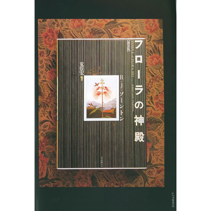 《平面港:书籍设计》(成朝晖)【摘要 书评 试读】