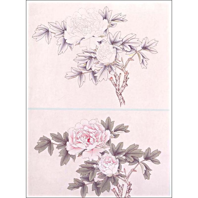 ...工笔牡丹画的发展和作品赏析 3.淡粉红色牡丹的渍染没骨画法