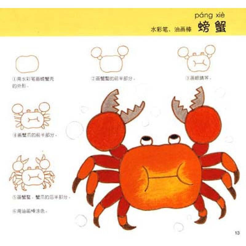 折折画画:动物