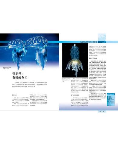 《贝塔斯曼动物大百科:海洋动物》【摘要