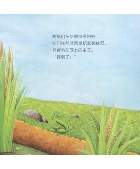 植物成长过程绘本