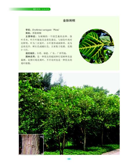 《常见园林植物·乔木》【摘要