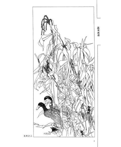 中国画线描:蔬果画谱
