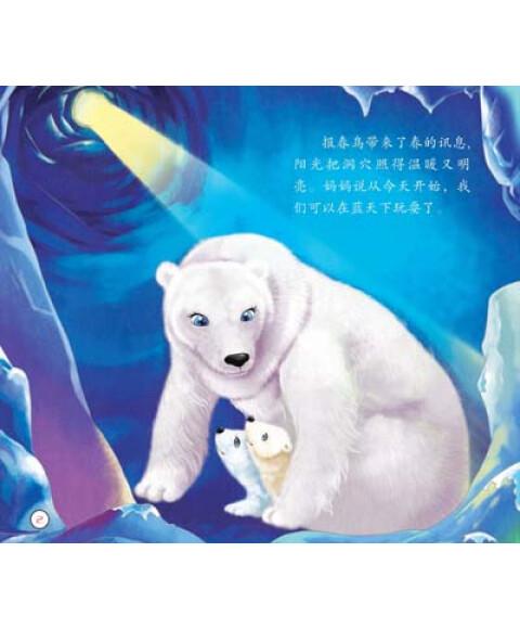 兔子宠物:北极熊企鹅日记晋江哪里有卖海豚动物图片