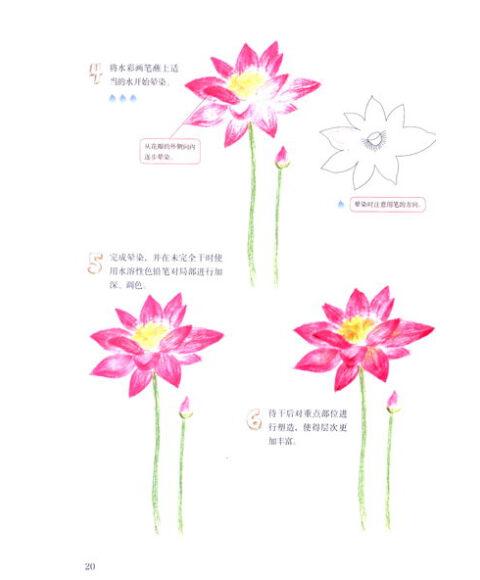 《幸福手绘3 水溶性色铅笔de四季花语》(陈玲杰)