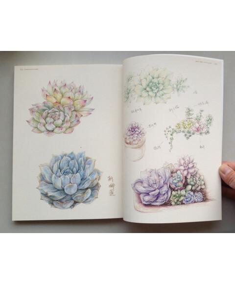 最手绘·绘多肉:多肉植物经典彩铅手绘图解(送书签)