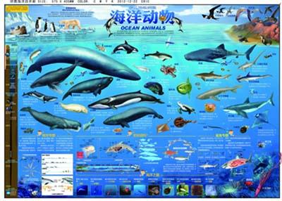 少儿地板拼图:海洋动物拼图(4开)