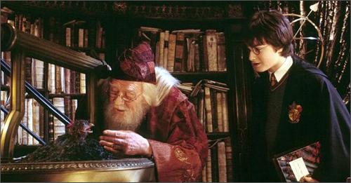 哈利·波特与密室+神奇四侠2:银影侠来袭(2dvd9)