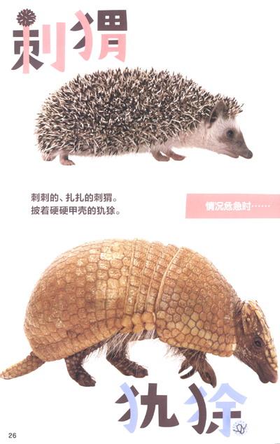 实物大小的动物园》