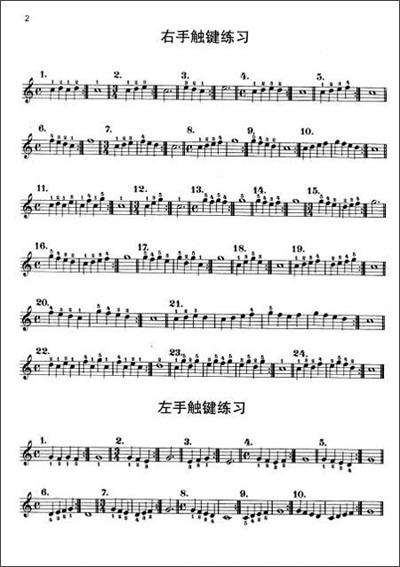 《拜厄钢琴基础教程(教学版)》()【摘要