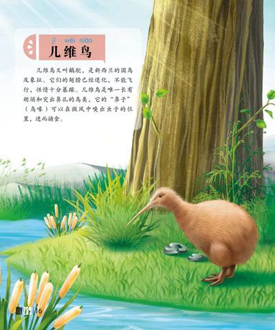 食肉馆:大熊猫/小熊猫/老虎