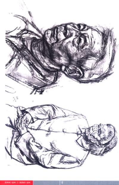 脖子结构图片分解图