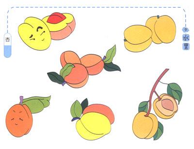萝卜白菜简笔画