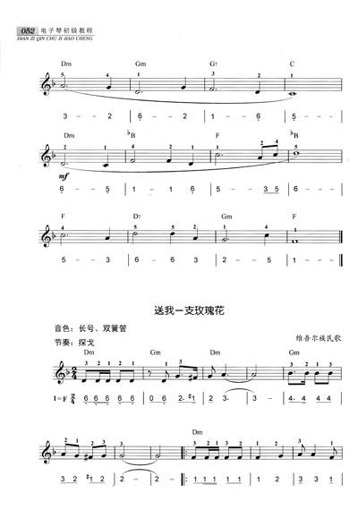 电子琴初级教程(附cd光盘1张)