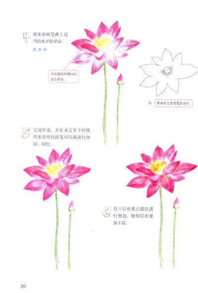 《幸福手绘3:水溶性色铅笔de四季花语》(陈玲杰)