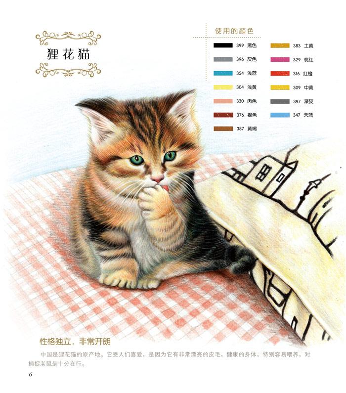 大人的填色书 可爱猫咪