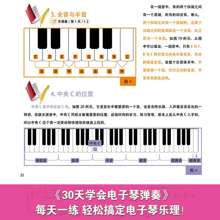 包邮30天学会电子琴弹奏 电子琴零基础自学教程 电子琴初学入门教程图片