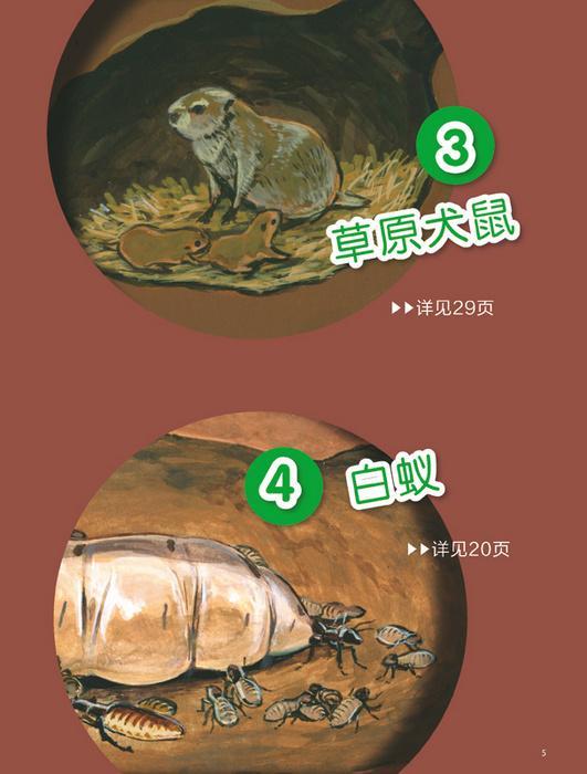 探究动物的绕道取食图片