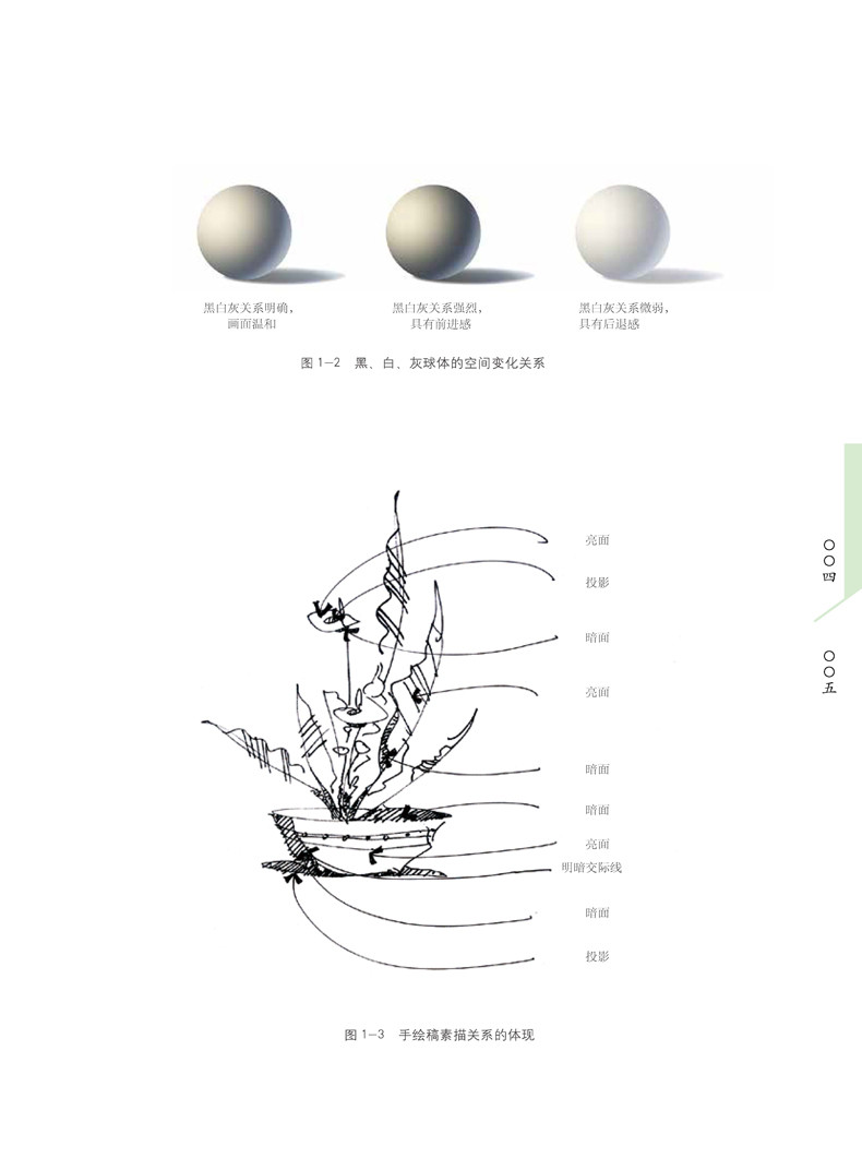 包邮 插花花艺手绘表现图技法 第2版 花艺手绘 插花绘画技巧教程 插花