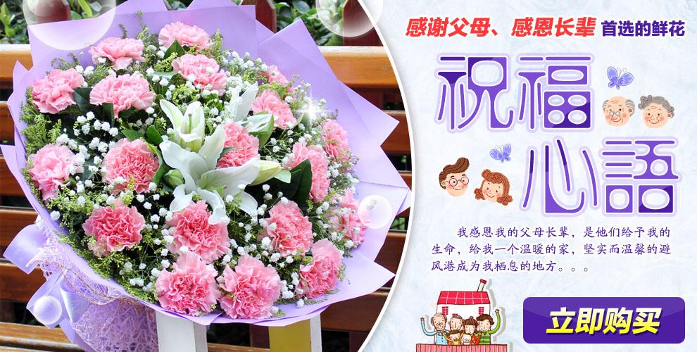 康乃馨 三八妇女节康乃馨