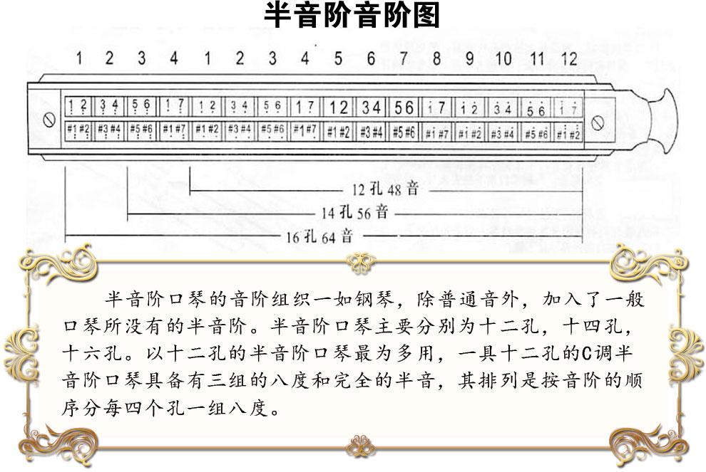 东方鼎梦想者半音阶口琴12孔easttop口琴1248图片
